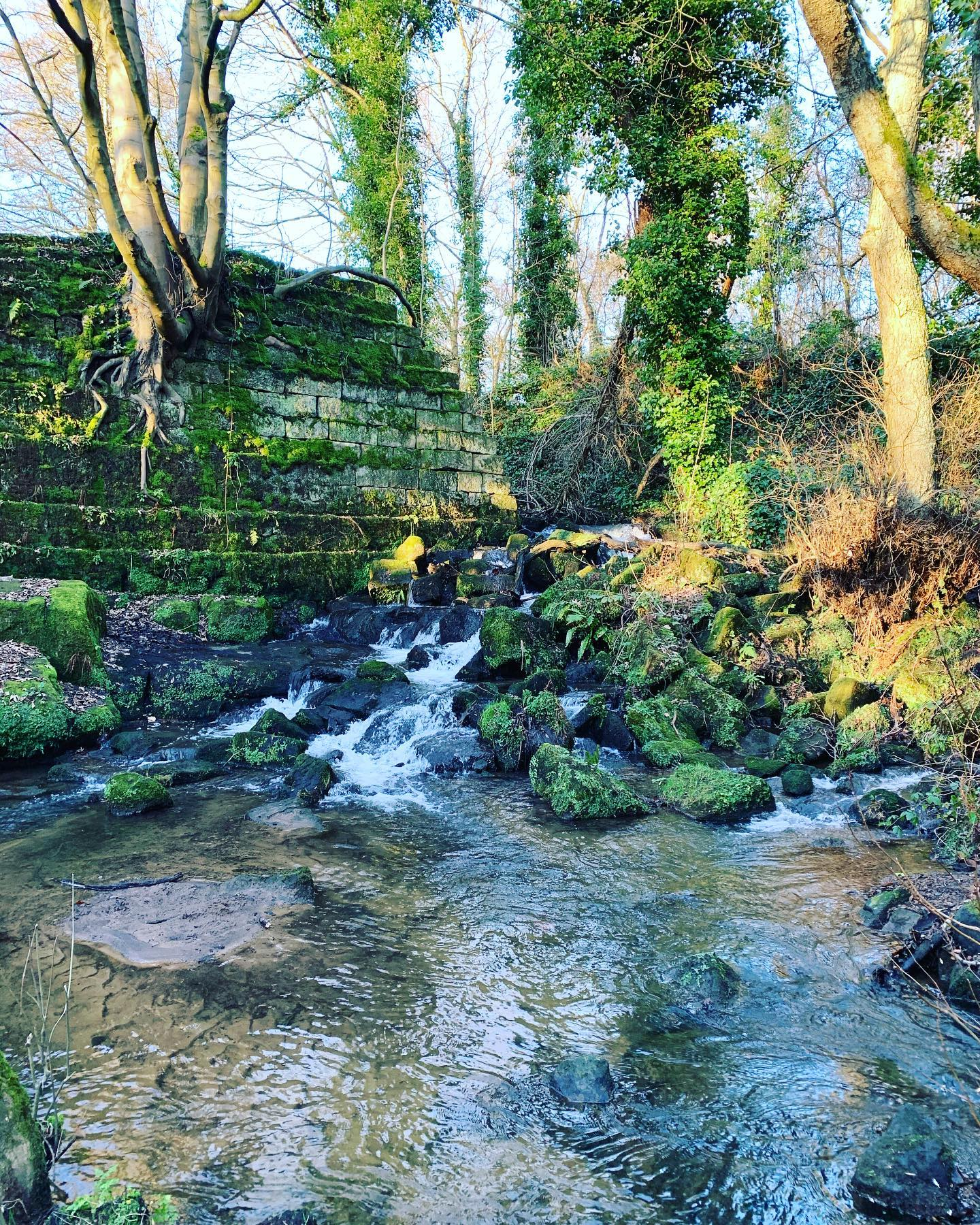 A quite spot at Lumsdale Waterfalls up near Matlock 🌳💦🌳